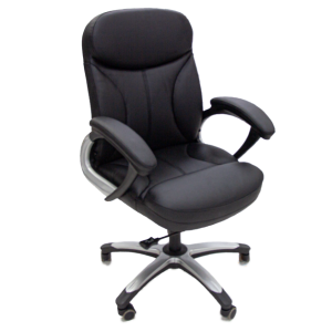 Executive Client / Technician Chair - black colour